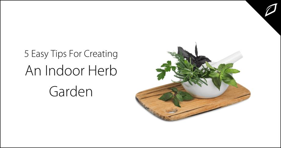 5 Easy Tips For Creating An Indoor Herb Garden-2