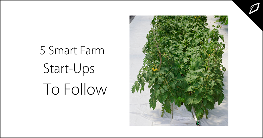 5 Smart Farm Start Ups To Follow