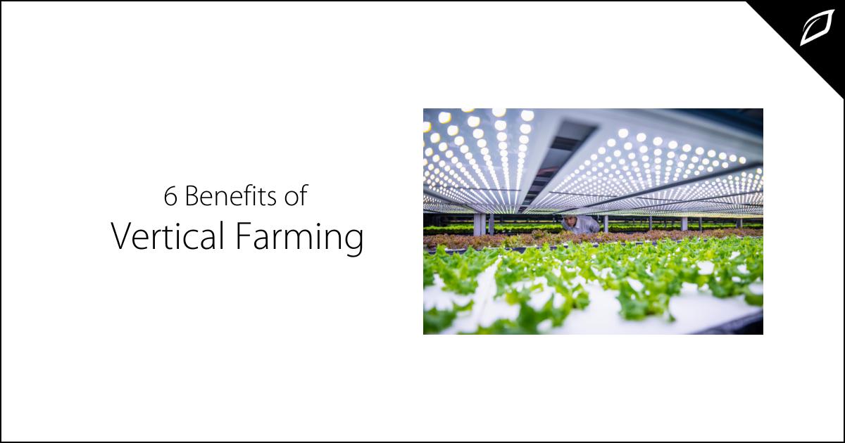 6 Benefits of Vertical Farming-1