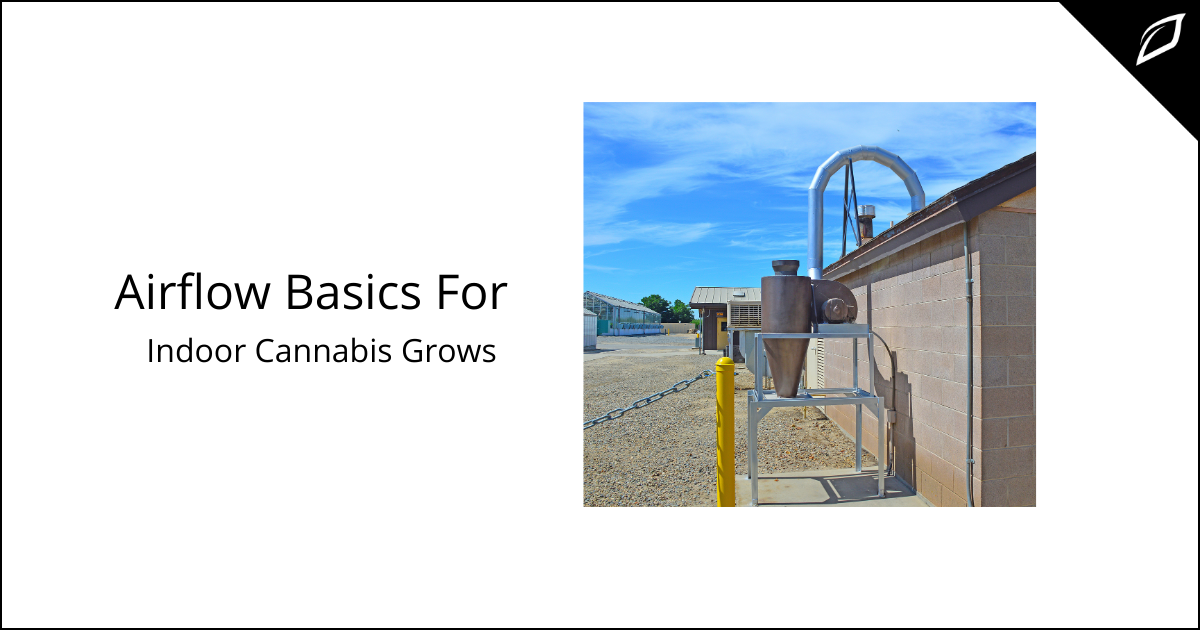 Airflow Basics For Indoor Cannabis Grows
