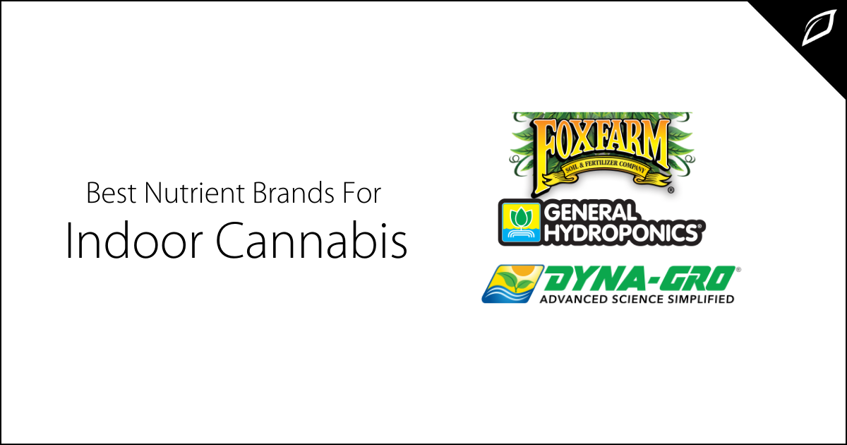 Best Nutrients Brands For Indoor Cannabis