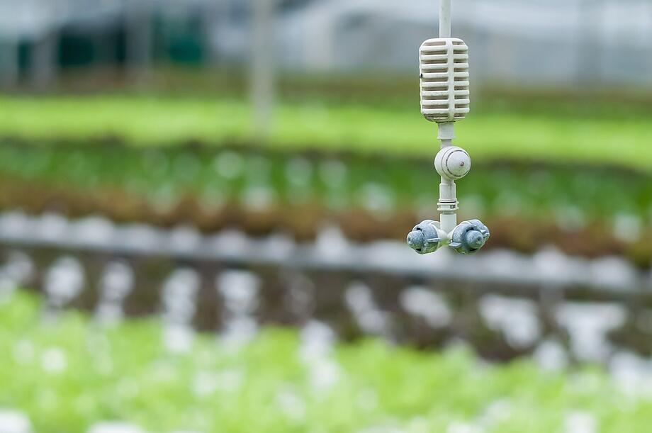 Precision Irrigation With Smart Farm Technology | Growlink