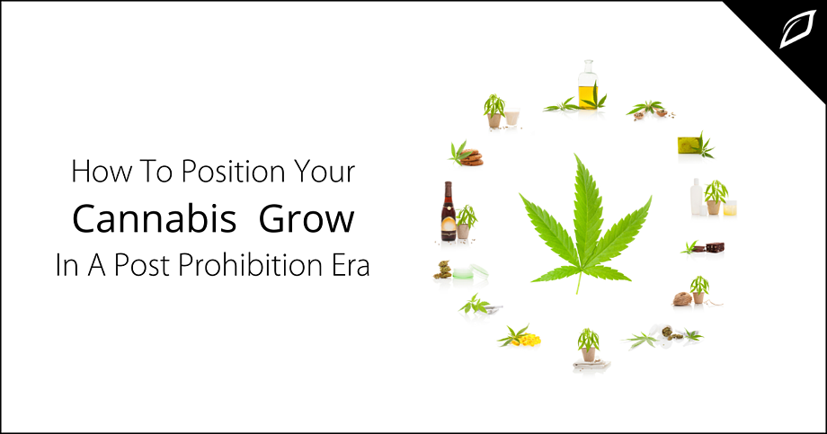 How To Position Your Cannabis Grow In a Post Prohibition Era
