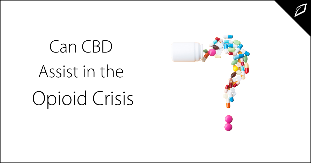 Can CBD Assist in the Opioid Crisis