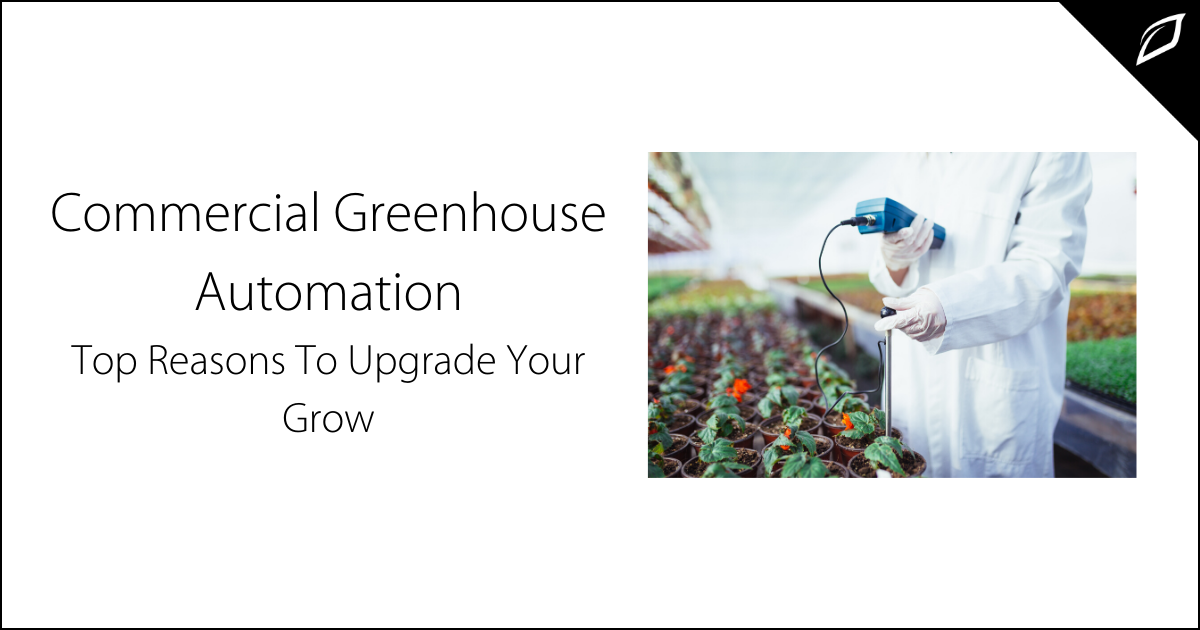 Commercial Greenhouse Automation 1