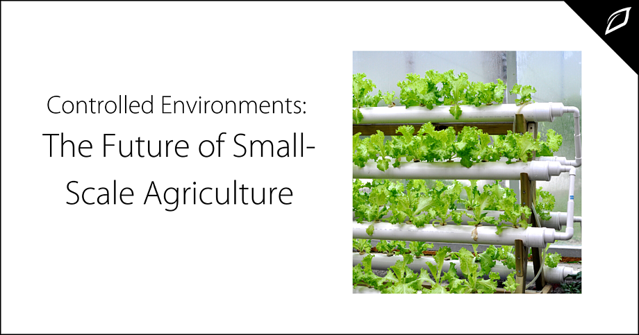 Controlled Environments_ The Future of Small-Scale Agriculture