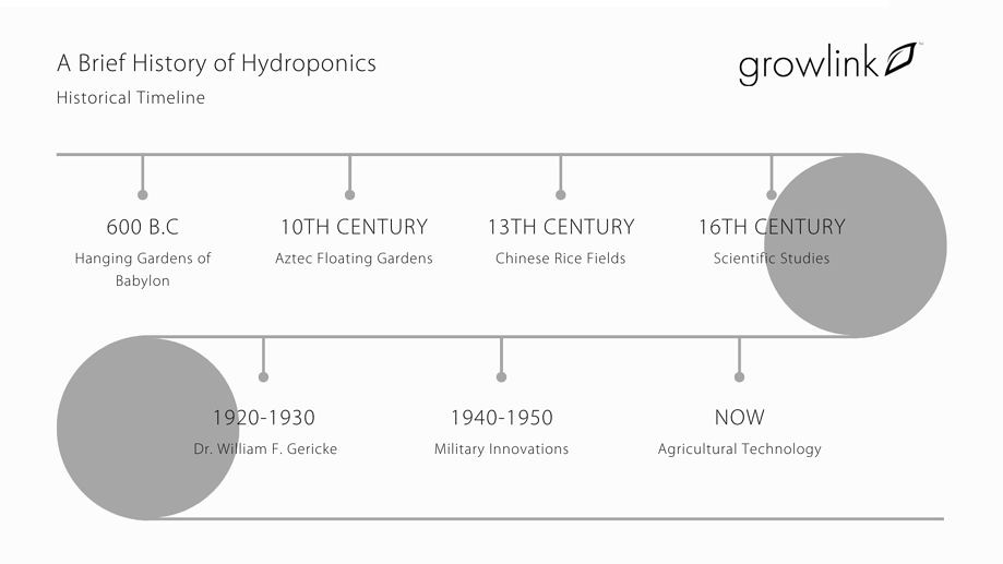 Copy of A Brief History of Hydroponics