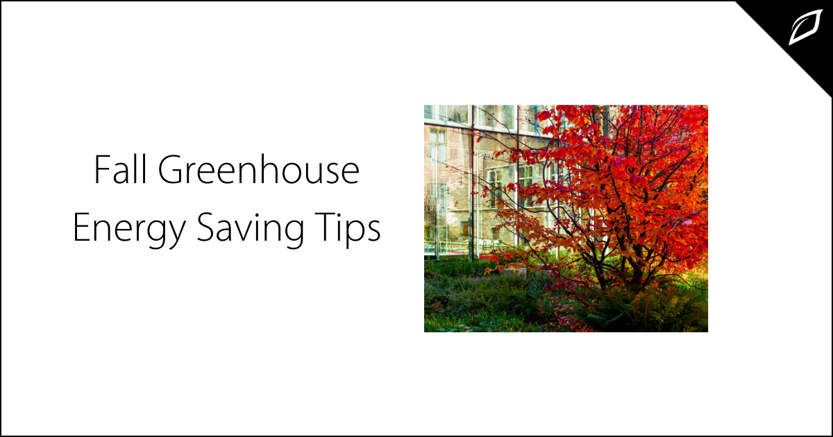 Fall Greenhouse Energy Saving Tips