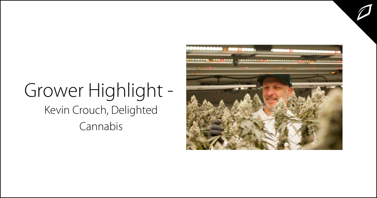 Grower Highlight - Kevin Crouch Delighted Cannabis
