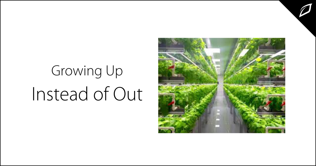 Growing Up Instead of Out