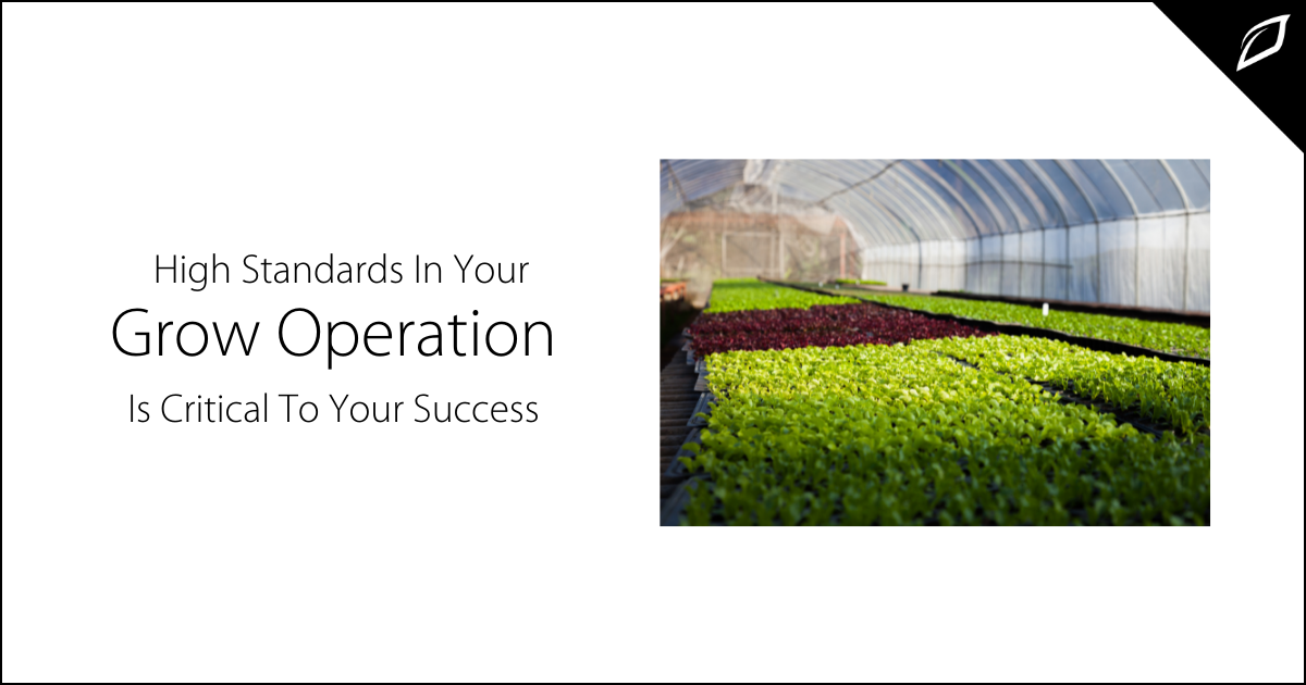 High Standards In Your Grow Operation Is Critical To Your Success