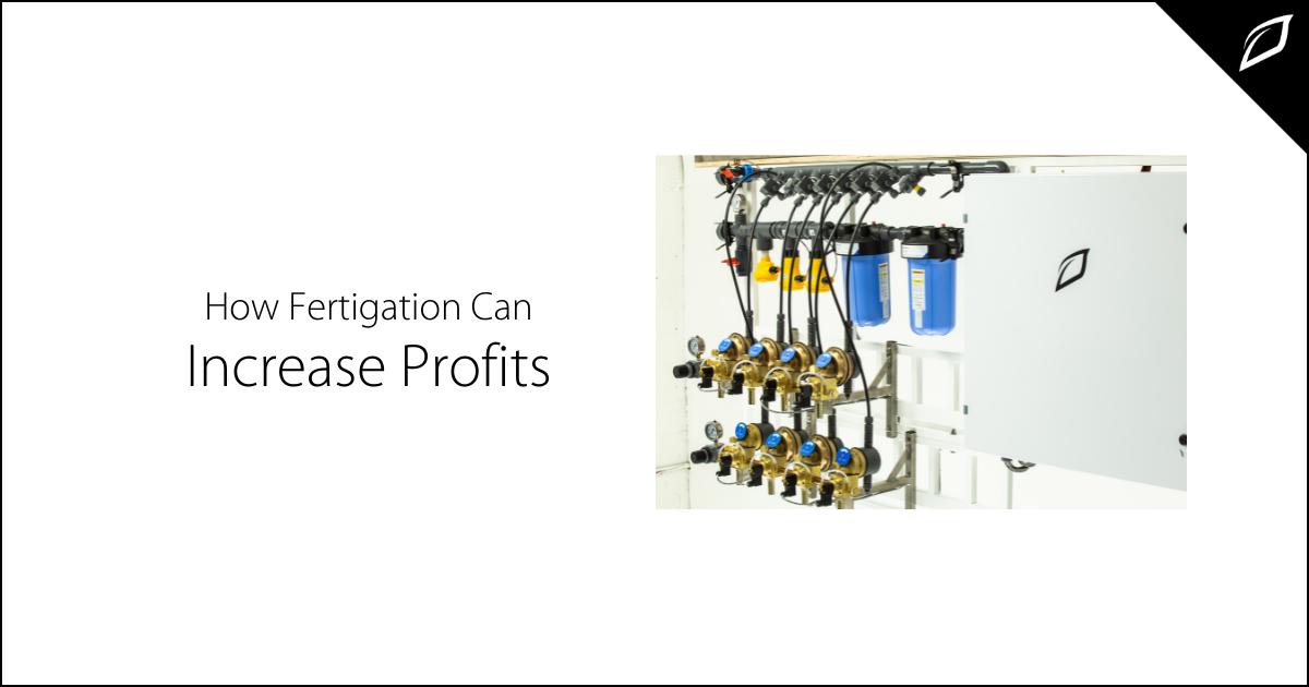 How Fertigation Can Increase Profits (1)