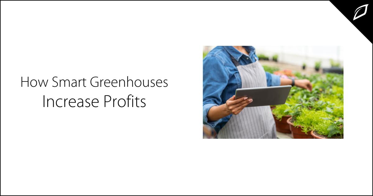 How Smart Greenhouses Increase Profits (1)