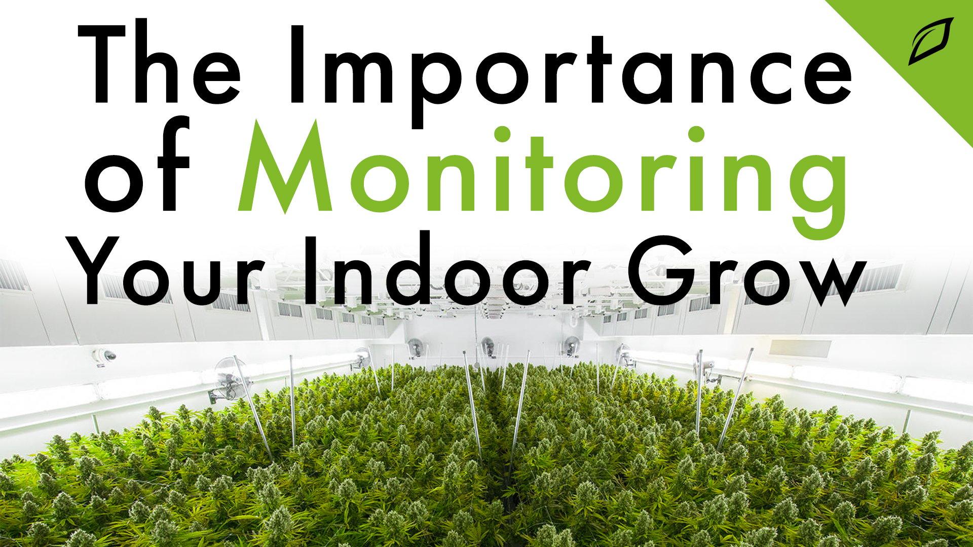 Importance of Monitoring Blog 16x9
