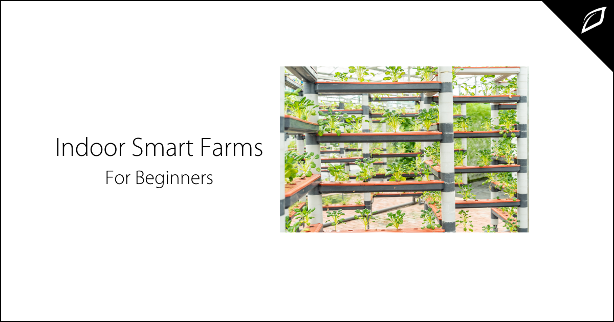 Indoor Smart Farms For Beginners