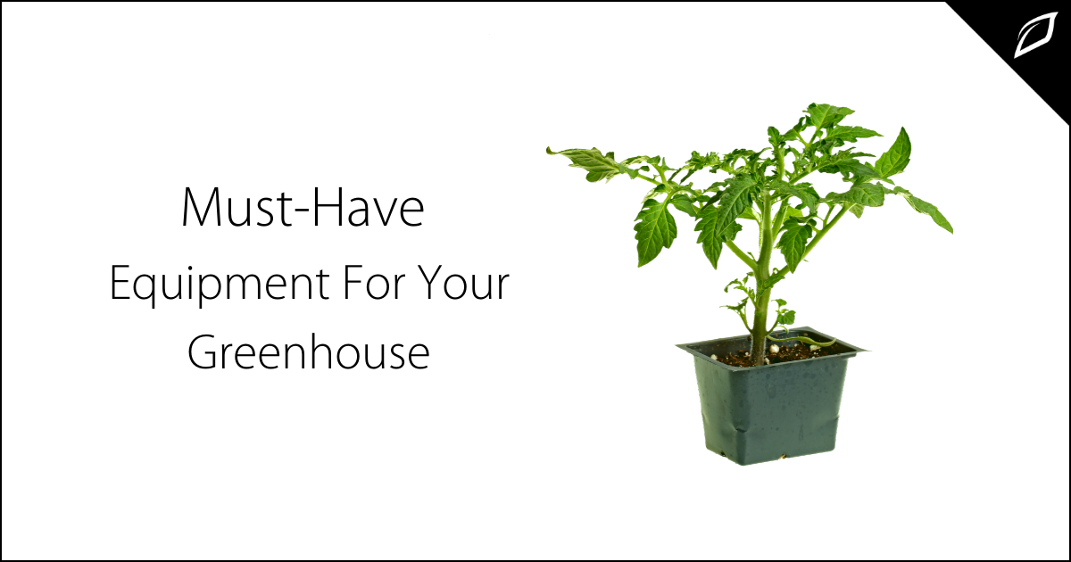 Must-Have Equipment For Your Greenhouse