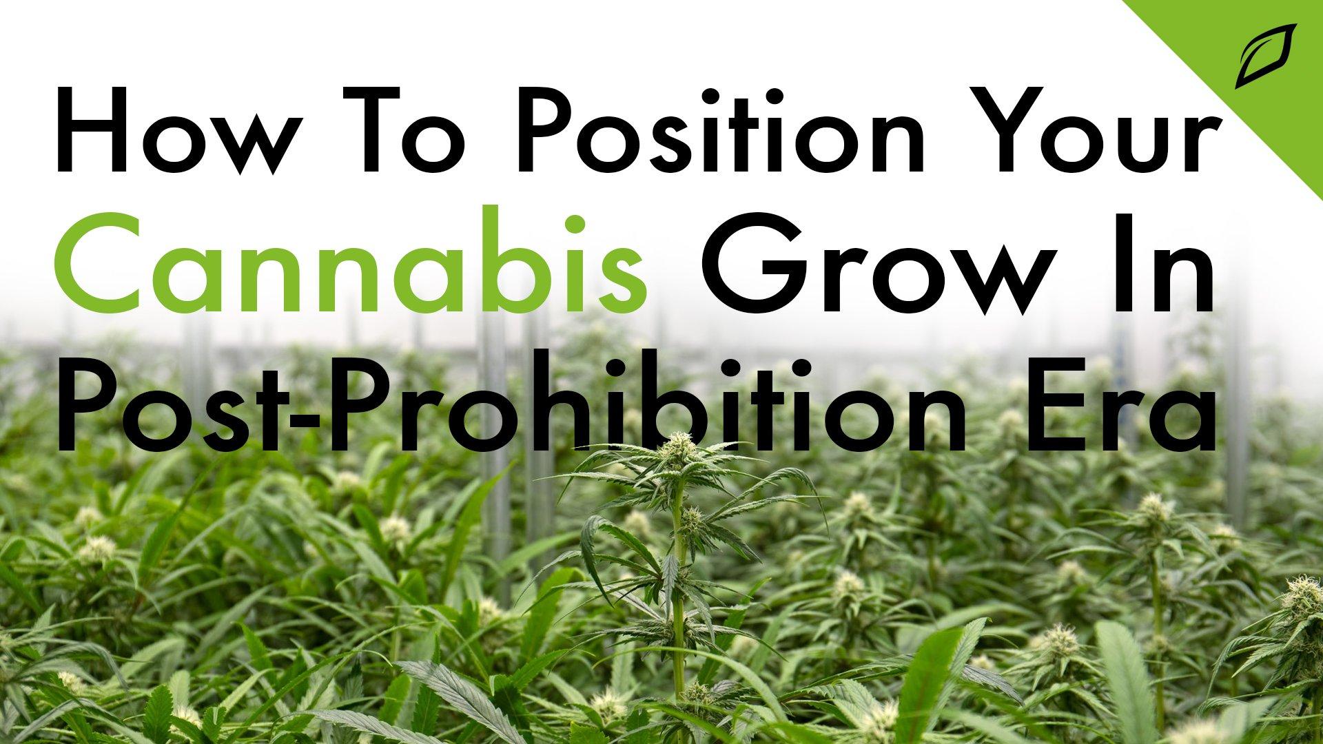 Prohabition Blog 16x9