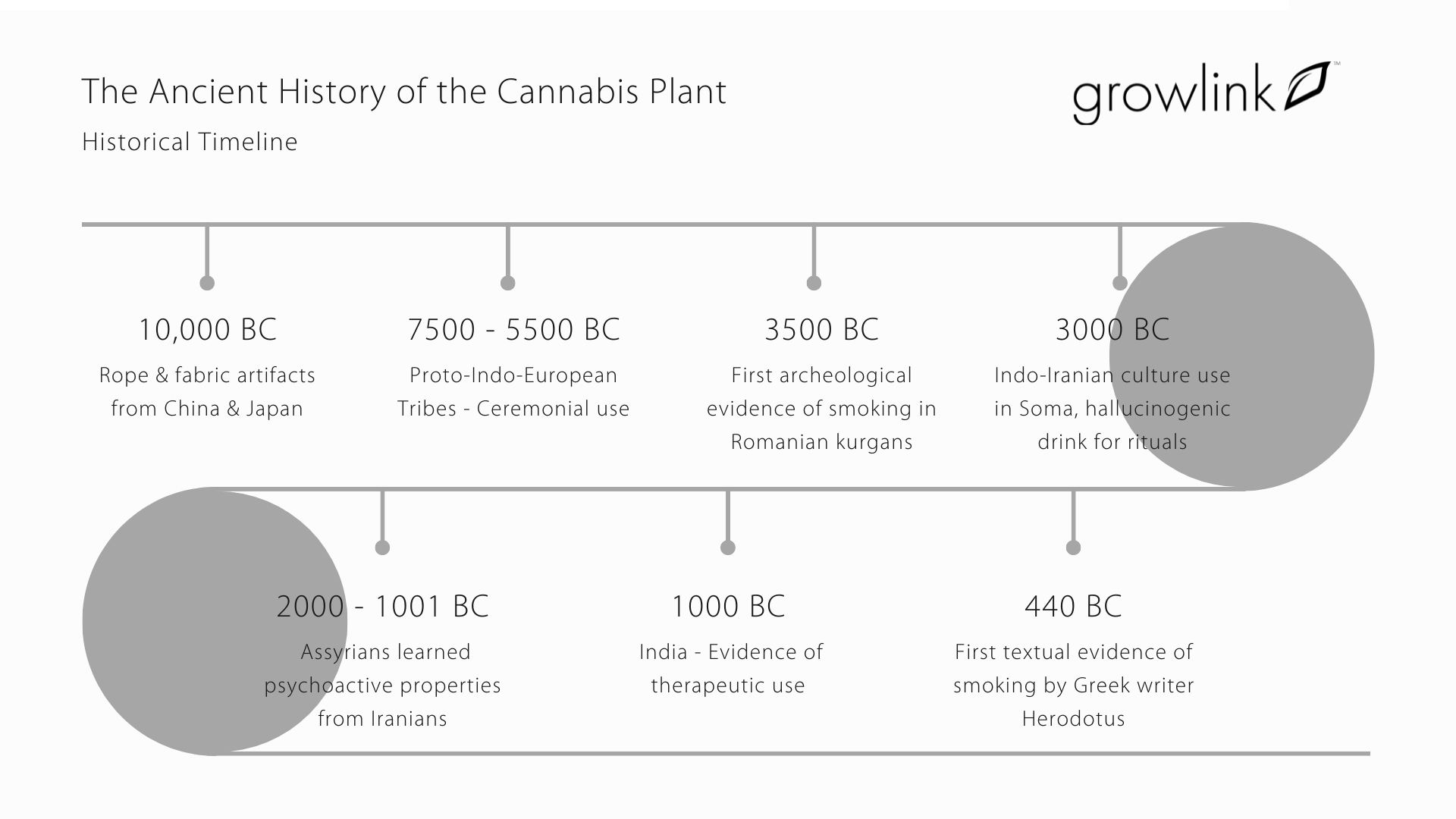 The Ancient History of the Cannabis Plant (3)