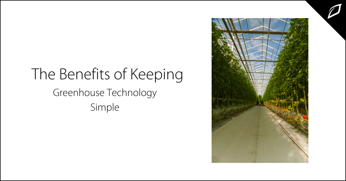 The Benefits of Keeping Greenhouse Technology Simple