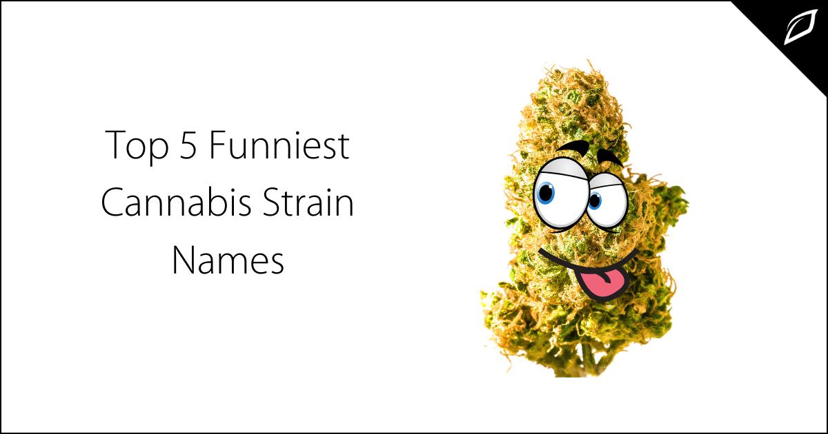 Top Five Funniest Cannabis Strain Names
