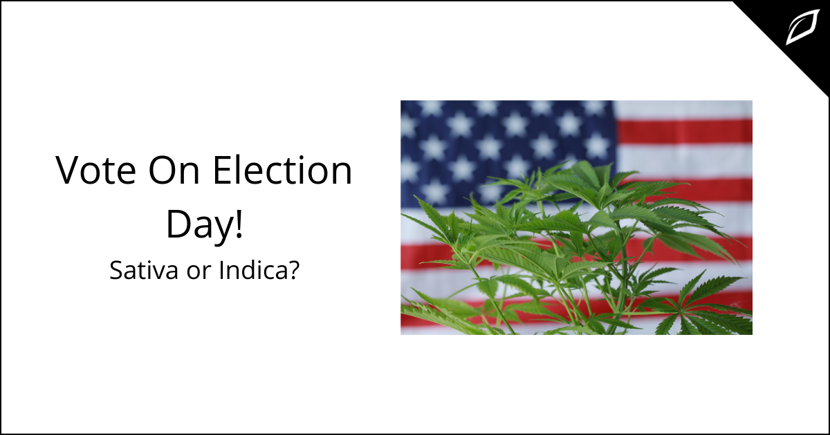 Vote On Election Day