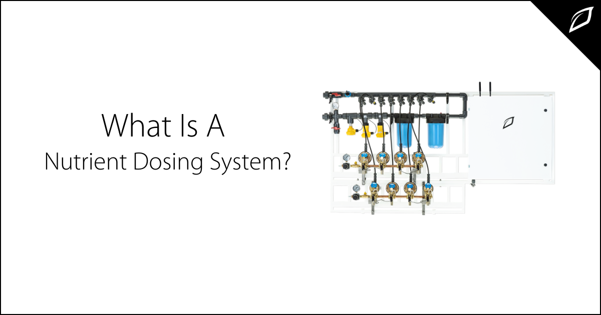 What Is A Nutrient Dosing System?