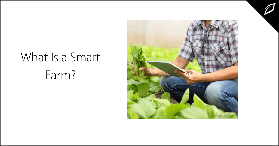 What Is a Smart Farm?