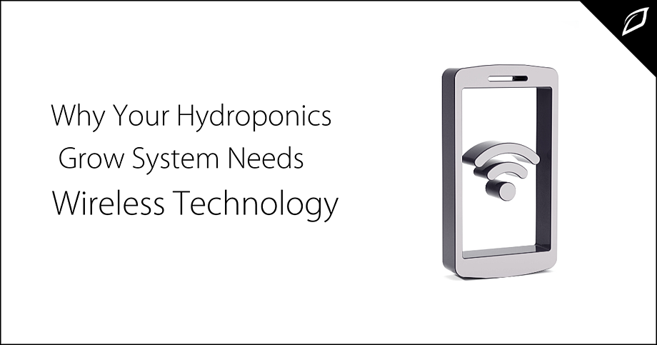 Why Your Hydroponics Grow System Needs Wireless Technology