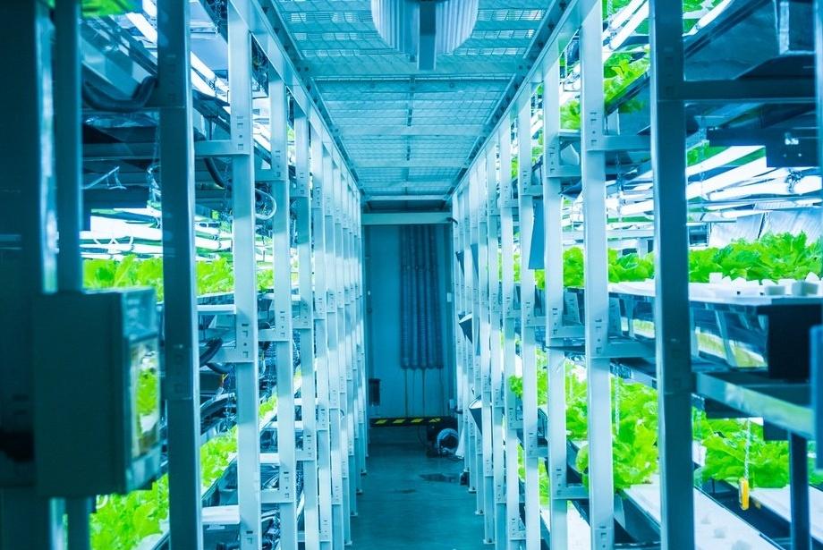 Container Farm