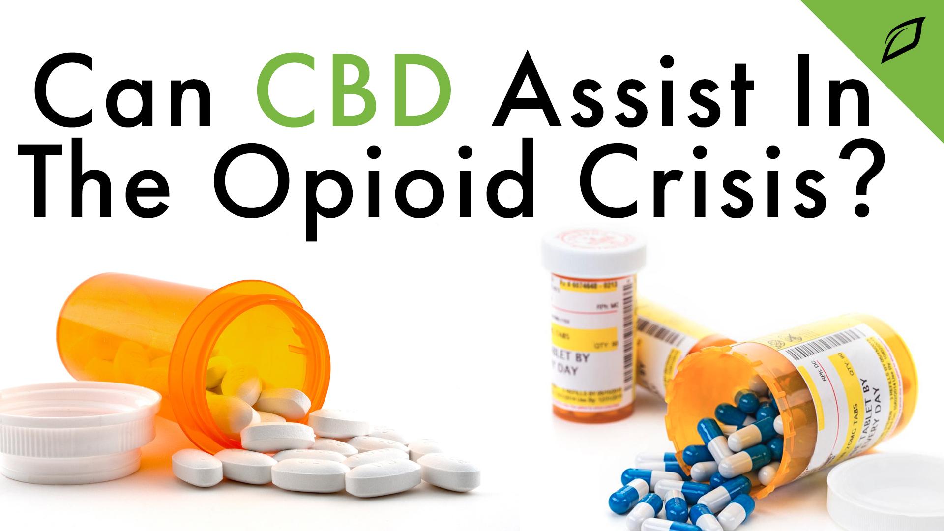 Opioid Crisis Blog 16x9